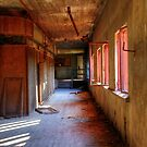 23.9.2014: Morning in Abandoned Factory by Petri Volanen