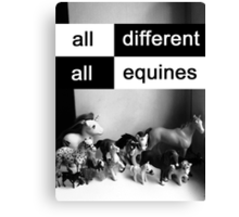 All different, all equines Canvas Print