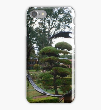 Through the Looking Glass? iPhone Case/Skin