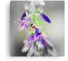 Bee on Time - Abstract Canvas Print