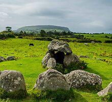 Carrowmore Megalithic Cemetery, Sligo, Ireland by Mark Bangert