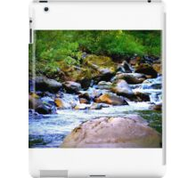 Signature Photo iPad Case/Skin