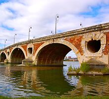 Pont neuf bridge by derek blackham
