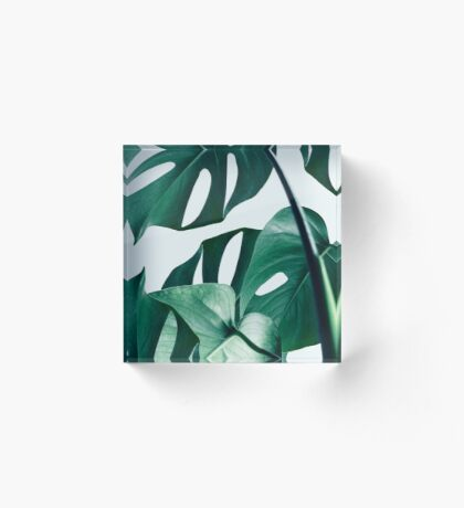 Monstera #redbubble #artprints Acrylic Block