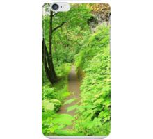 Disappearing Path iPhone Case/Skin
