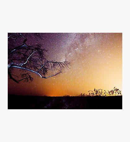Botswana Night Sky Photographic Print