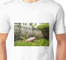 birch with moss Unisex T-Shirt