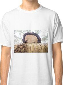 tinder fungus on birch Classic T-Shirt