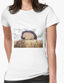tinder fungus on birch Womens Fitted T-Shirt