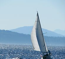 Sailboat on Puget Sound by AwayLaughing