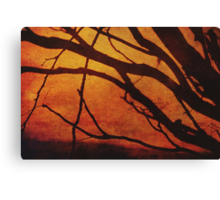 State of Grace Canvas Print
