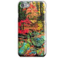AUTUMN, GREENBRIER iPhone Case/Skin