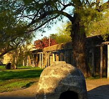 Mission San Juan in San Antonio by Charmiene Maxwell-batten