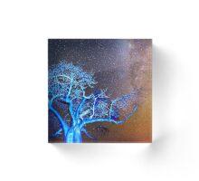 Starry Night in Botswana Acrylic Block