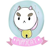Puppycat! by robynraccoon