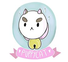 Puppycat! Photographic Print