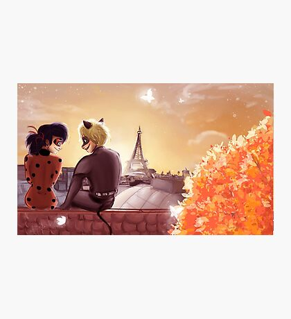Miraculous Lady bug & Chat Noir Photographic Print