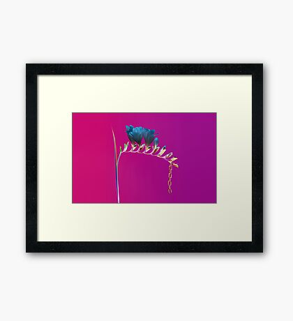 Flume Inverted Framed Print