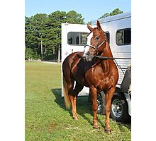 Deer Run Horse Show Club Sept. 20, 2014 (22) Photographic Print