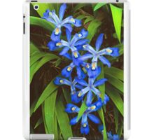 CRESTED DWARF IRIS iPad Case/Skin