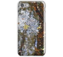 Mosaic Waterwork iPhone Case/Skin