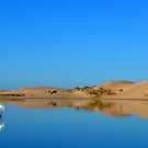 Silver Lake Sand Dunes by Debbie  Maglothin