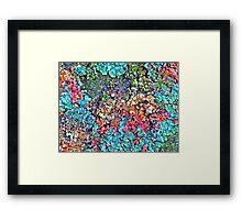 coloured Lichen Framed Print