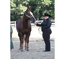 Deer Run Horse Show Club Sept. 20, 2014 (61) Photographic Print