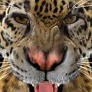 Jaguar by Vac1