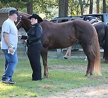 Deer Run Horse Show Club Sept. 20, 2014 (68) by DLitefulImagery