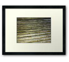 Mouldy Wood Framed Print