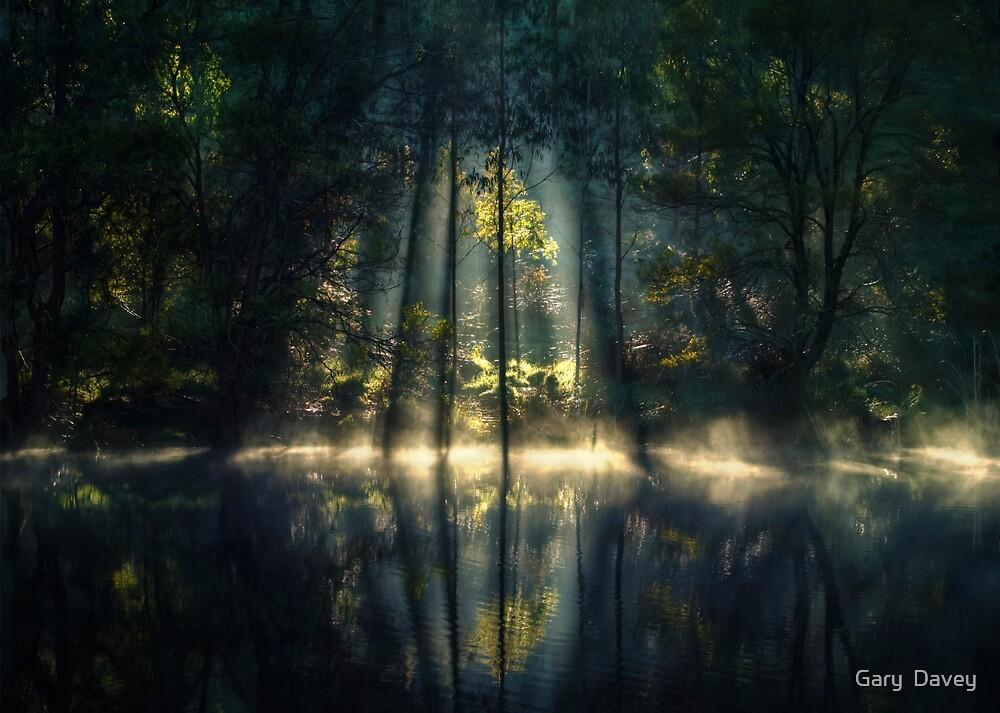 Golden Moment... by Gary  Davey (Jordy)