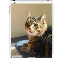 Jimmy Cat, Waiting for Dinner. iPad Case/Skin