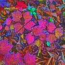 Bright Leaves by Eileen McVey