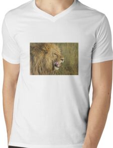 Lion Licking Mens V-Neck T-Shirt