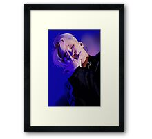 My blood, sweat and tears Framed Print