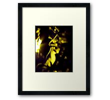 Mystery Woman Framed Print