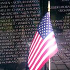 IN MEMORY OF   ( The Vietnam Memorial) by KEITH  R. WILLIAMS