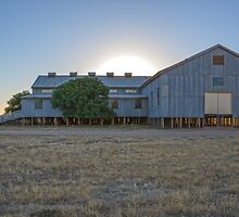 Sun Rising Behind The Old Shearing Shed. by mitpjenkeating