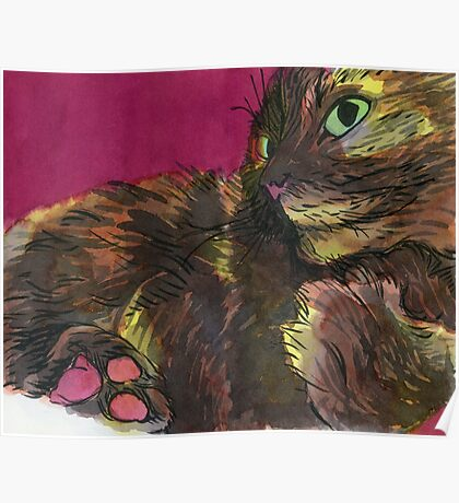 Tortie Paws Poster