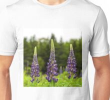 Trio of Lupins Unisex T-Shirt