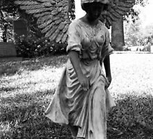 Angel Takes a Walk With Sorrow  by Nathan Little