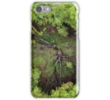Above a Clearing iPhone Case/Skin