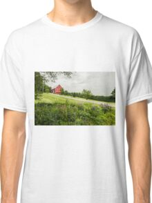 Lupins in the ditch Classic T-Shirt