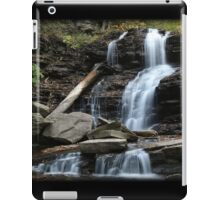 Shawnee Touch Of Color iPad Case/Skin
