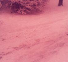 New England Winter- Red Sticker