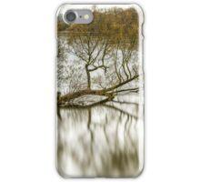 Wood in river iPhone Case/Skin