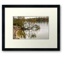 Wood in river Framed Print
