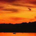 Swimming in Sunset Skies by Owed to Nature
