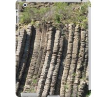 Organ Pipes (2) iPad Case/Skin